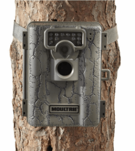 moultrie-a5-268x300