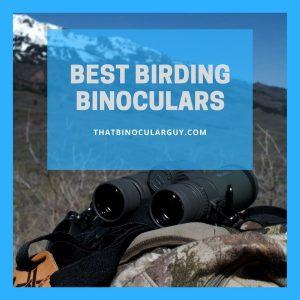ThatBinocularGuy.com - Best Birding Binoculars