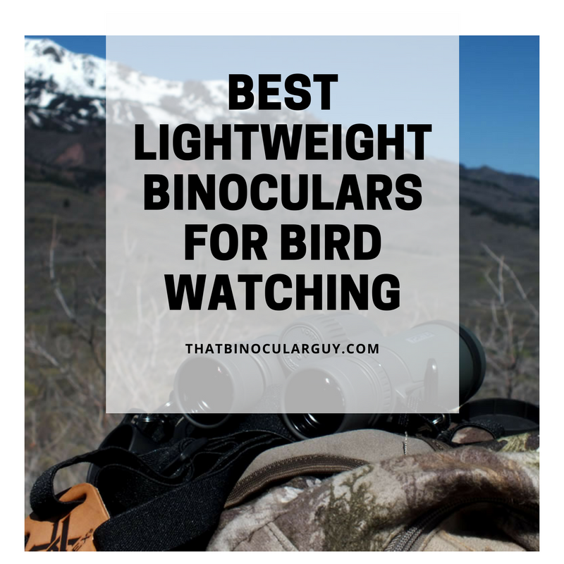 Best Lightweight Binoculars for Bird Watching - 3 Top Sellers of 2017