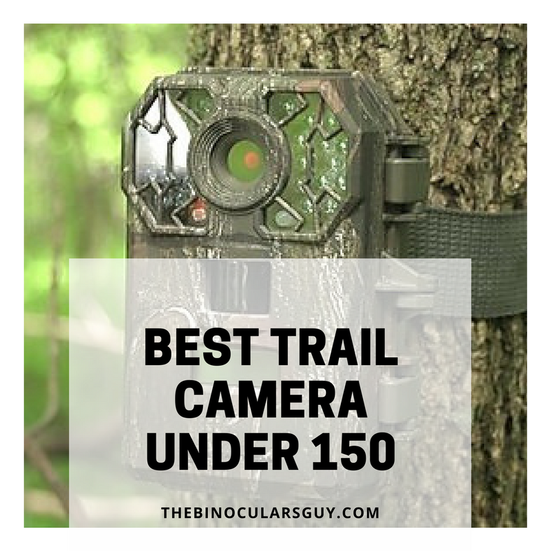 Best Trail Camera under 150 - Revealing my top picks for 2017