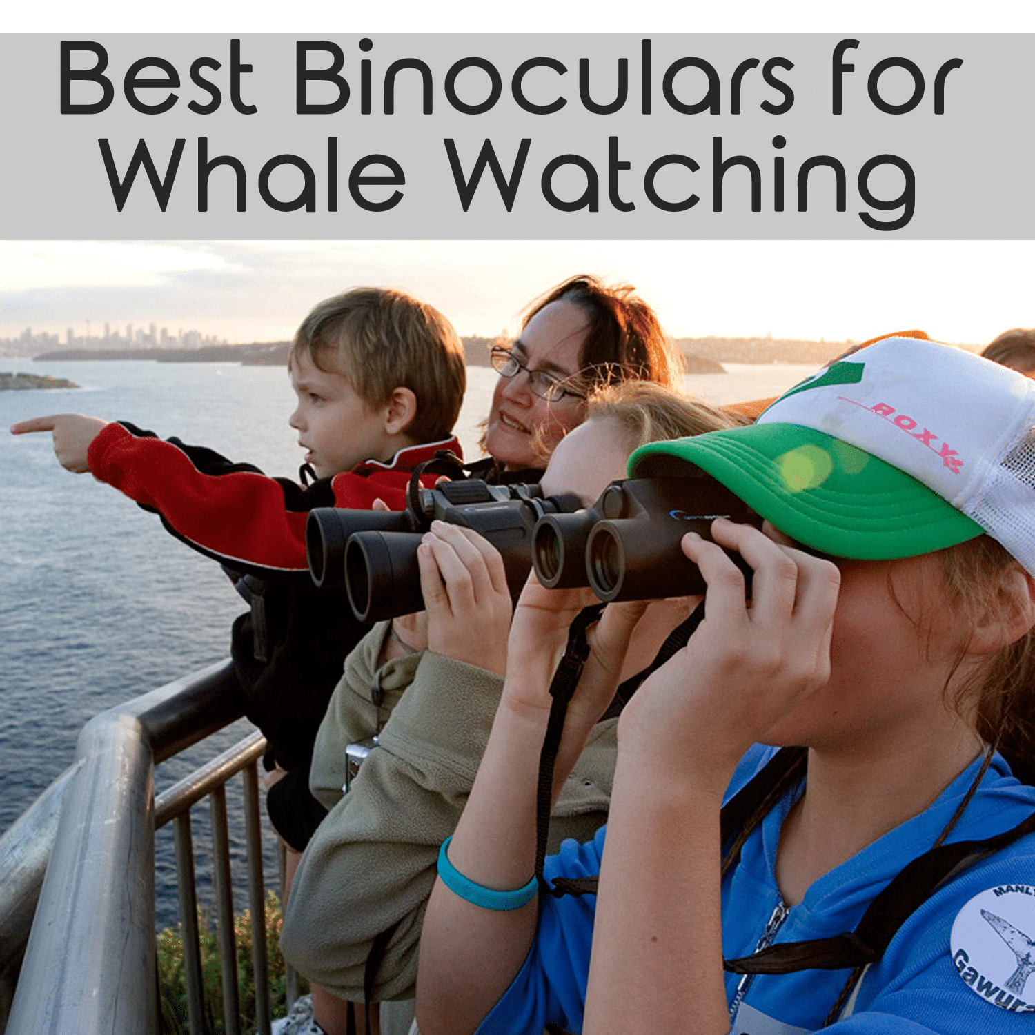 best binoculars for whale watching